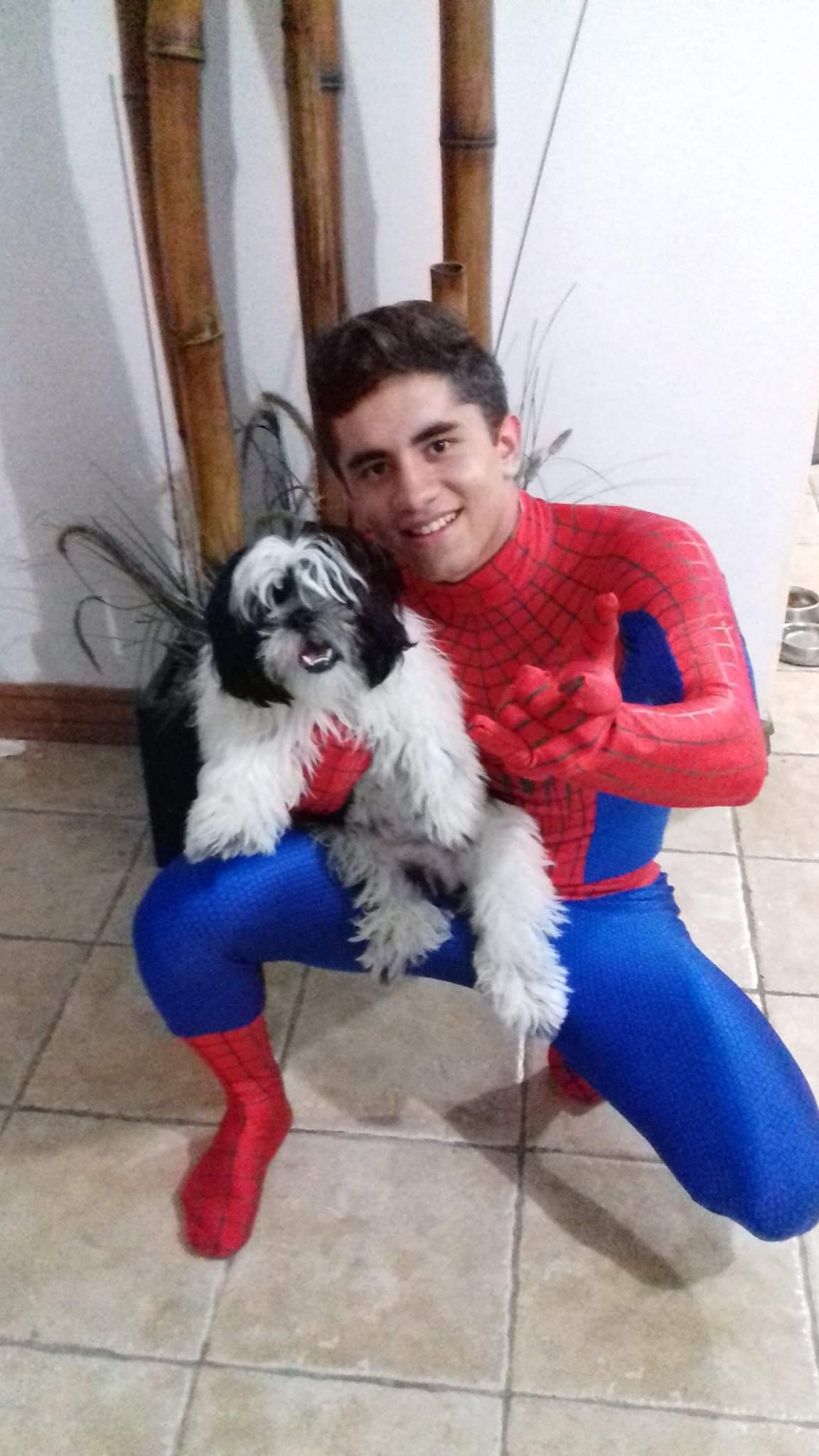 white spiderman suit
